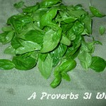 How to make basil pesto.