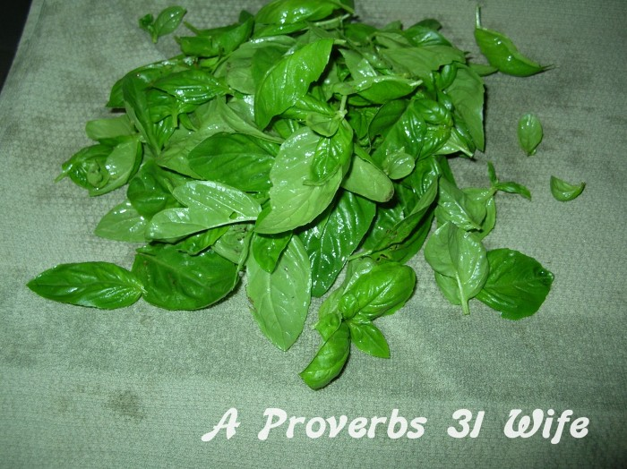 How to Make Basil Pesto