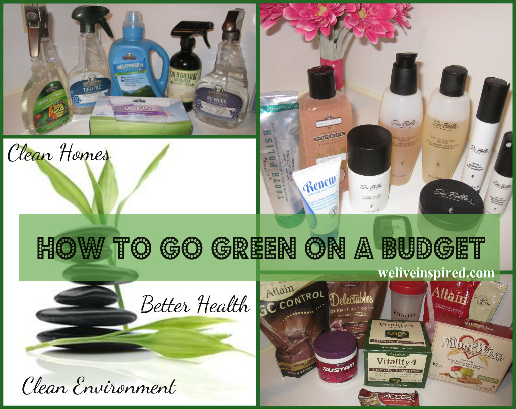 How we buy green on a budget