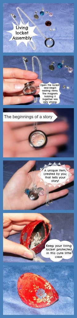 Living Lockets by Origami Owl