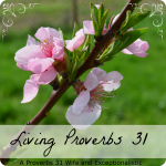 Encouragement and Thrift – Living Proverbs 31
