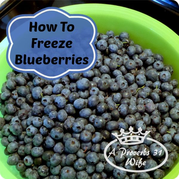 Freezing Blueberries, A Simple Way to Save
