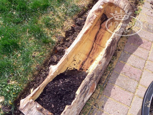Making a log planter for flowers a proverbs 31 wife for What is soil made out of