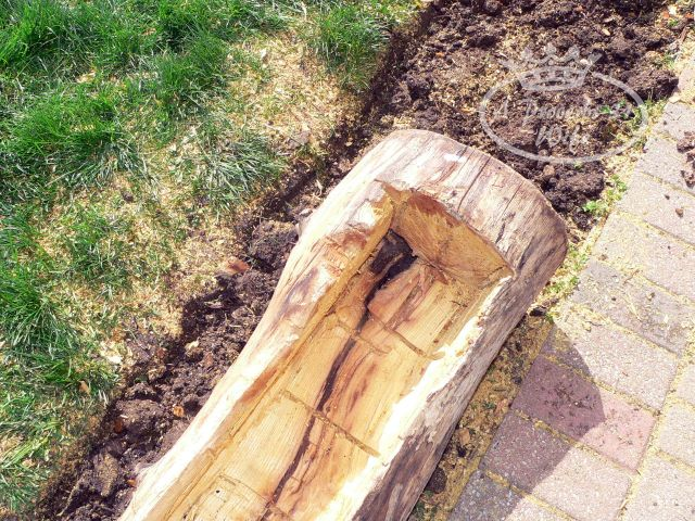Making a log planter. Use a chainsaw and ax to hollow out an old log