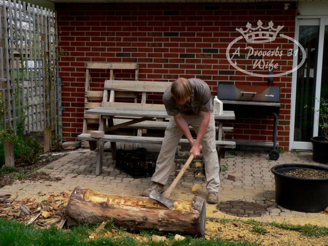 Making a log planter for flowers
