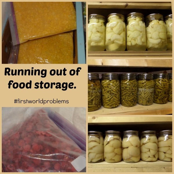 A bountiful harvest or first world problems a proverbs for Bountiful storage