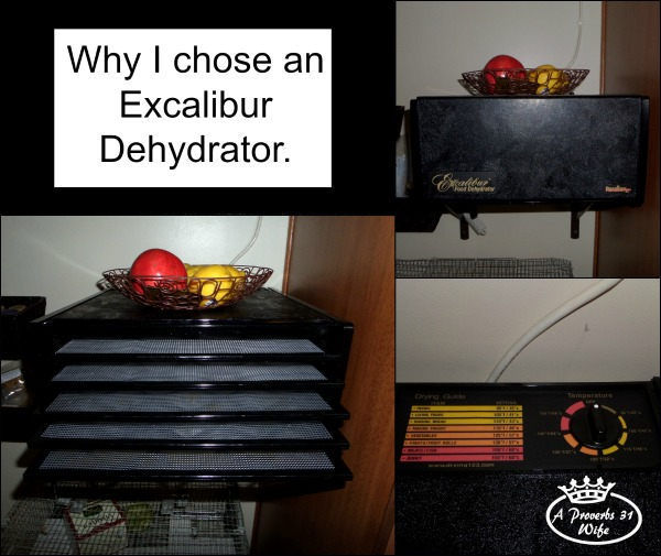 My food dehydrator review, or why I chose and excalibur.   http://aproverbs31wife.com/food-dehydrator-review/