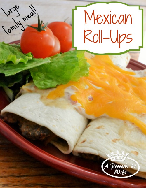 Mexican Roll-ups, A Beef Recipe