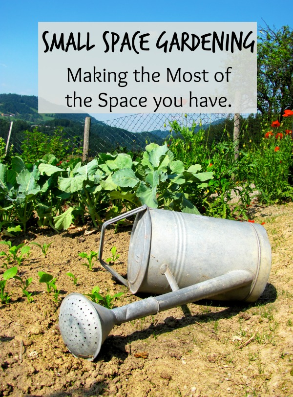 Small Space Garden Ideas  ~Making the Most of Your Space