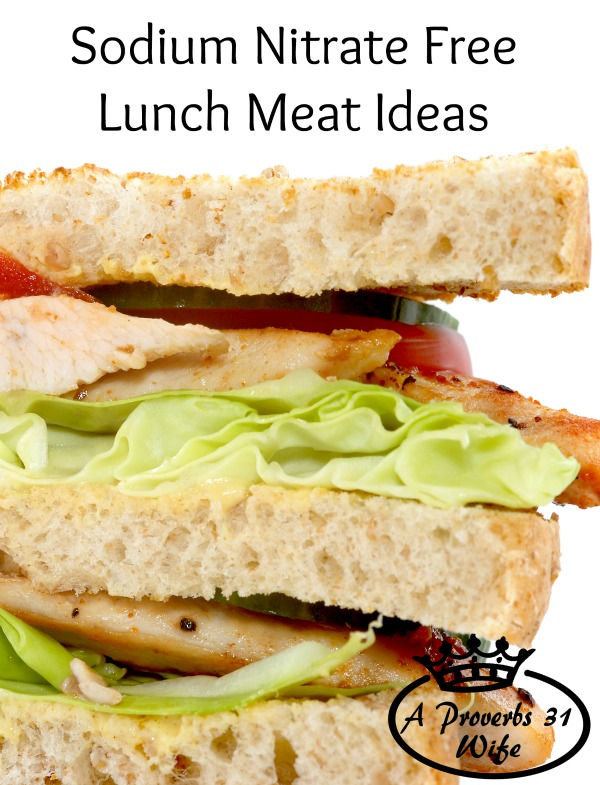 Lunchmeat Ideas ~Healthy, Nitrate Free Options.