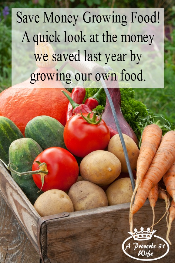 How we save money growing food. A look at what we saved in the past year, even though we only have a small garden.