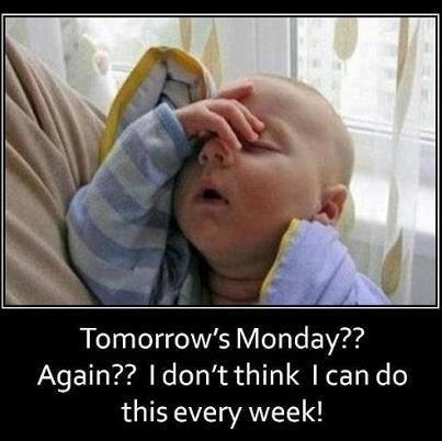monday-again-funny