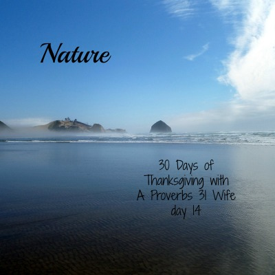 Nature ~30 Days of Thanksgiving day 14
