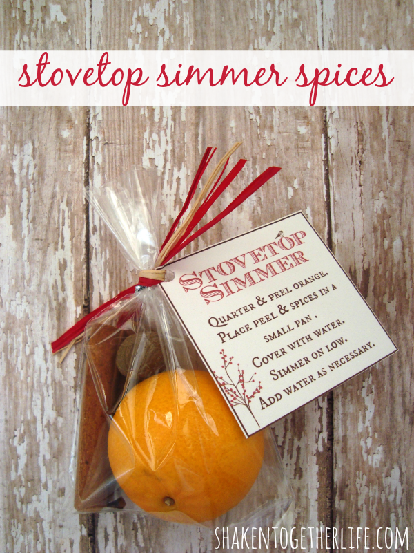 Stovetop simmer spices to give as Christmas gifts.