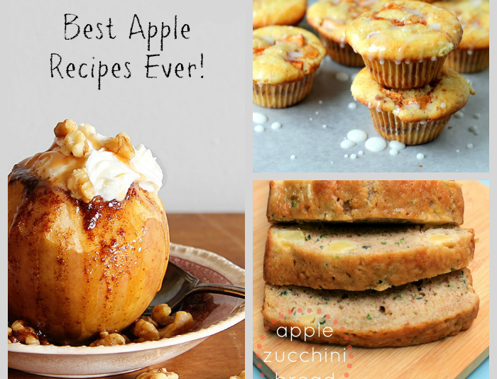 Here are 17 of the best apple recipes for fall (or any time!) these are a must try for the season