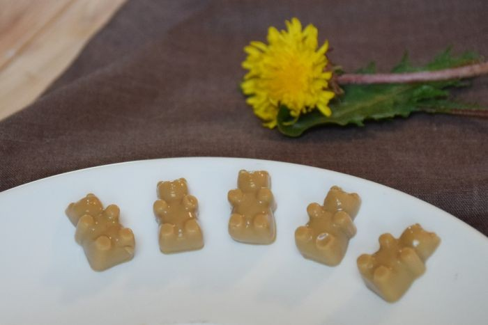 Mocha Gummy Bears Recipe with Herbal Coffee!!!