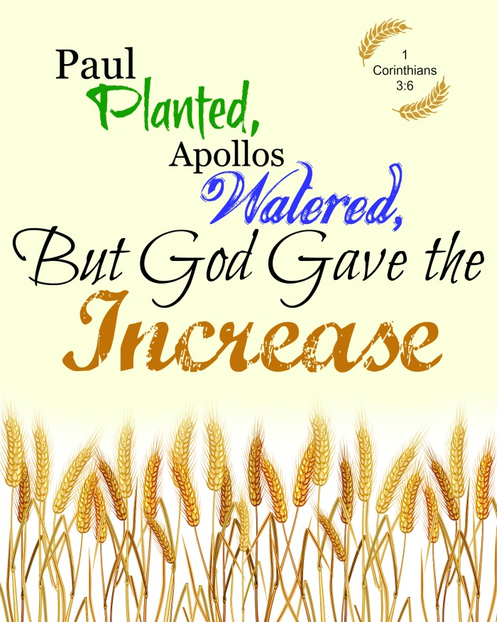 1 plants, another waters, but God gives the increase, free fall, harvest printable: Cultivating a harvest