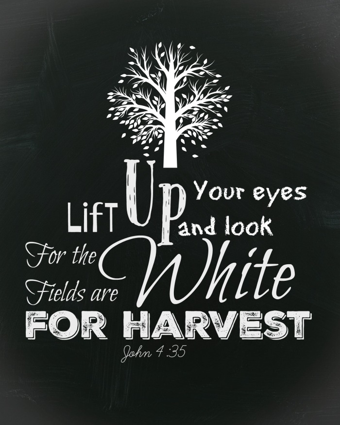 The harvest is now. Lift up your eyes and look for the fields are white for harvest. Free fall chalkboard printable.