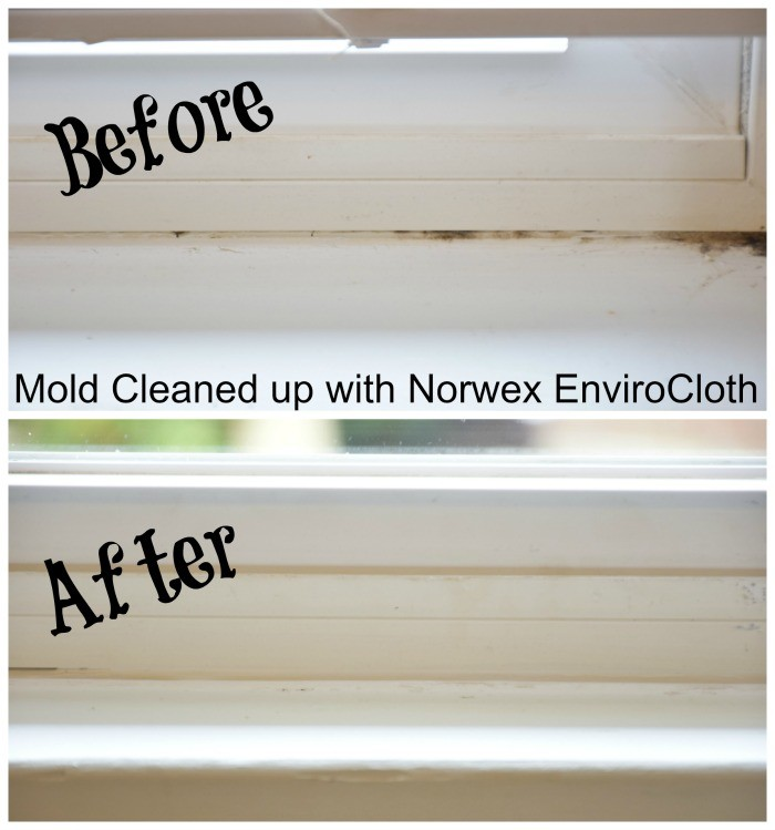 Nrwex cloths removing mold from window sills.