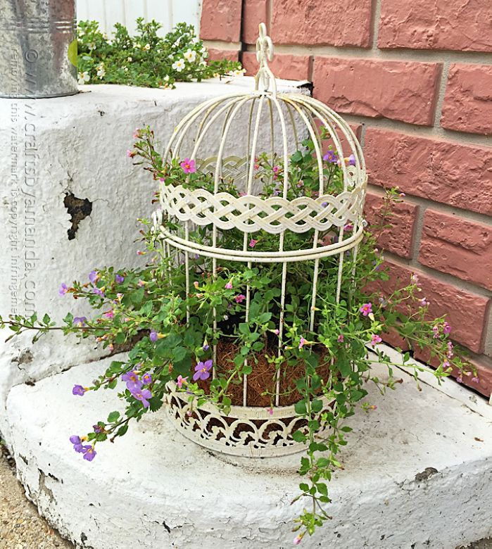 Uses for an old bird cage