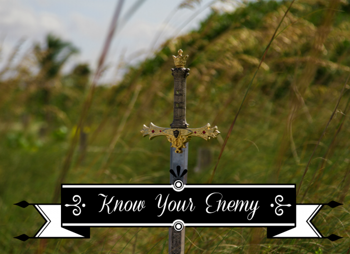 Know Your Enemy + Living Proverbs 31 Linkup