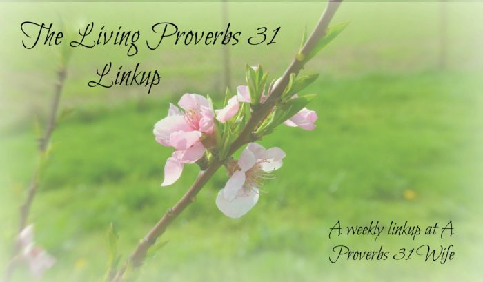 Prayer and Organization – Living Proverbs 31 Linkup