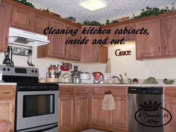 Cleaning and Organizing Kitchen Cabinets 101