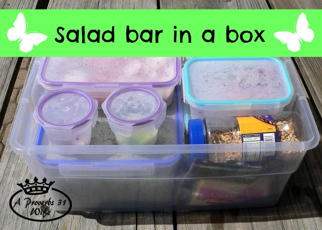 Salad Bar Box ~Easy way to add fresh veggies to your diet.