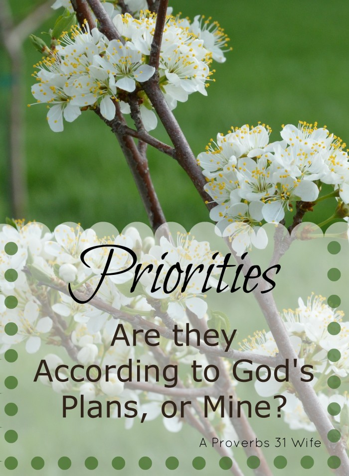 Priorities. Are they According to God's Plans, or Mine?