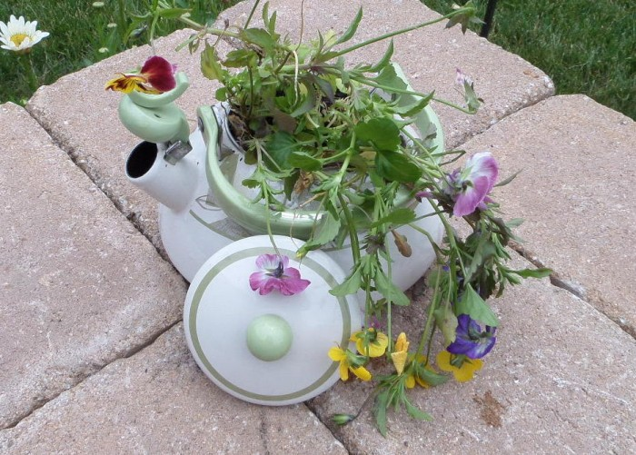 Tea Kettle Turned into a Garden Planter