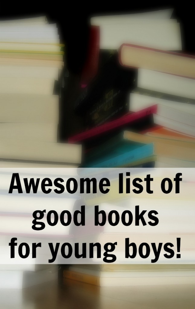 There is a great list of best books for boys found here. Maybe some christmas #giftideas! http://aproverbs31wife.com/best-books-for-boys/