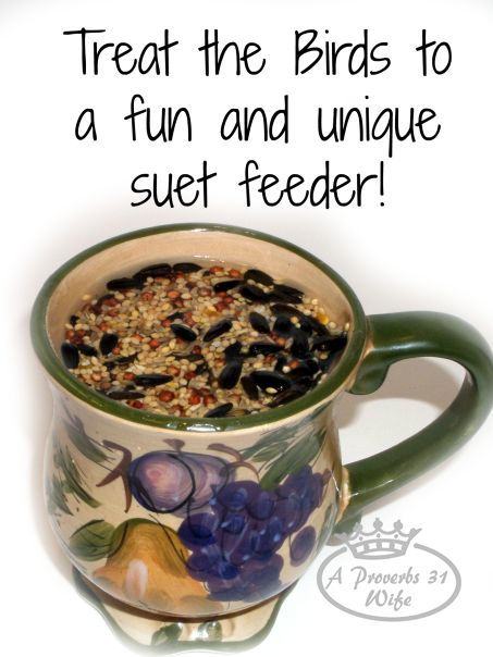 How to make your own bird suet feeders in a mug. *you will never believe how easy this is!