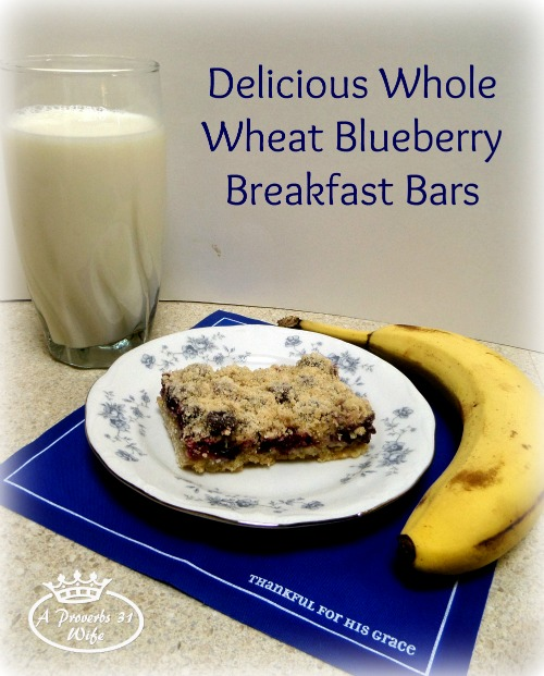 Whole Wheat Blueberry Breakfast Bars