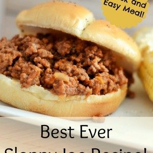 Best Sloppy Joe Recipe ~Your New Family Favorite!