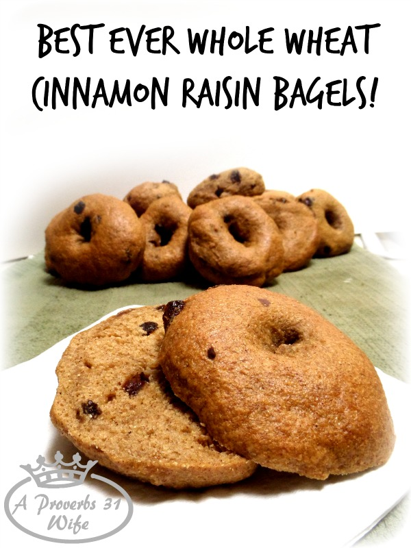 Best ever cinnamon raisin bagel recipe! Whole wheat, homemade and delicious!!!