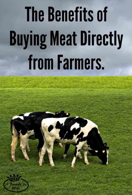 Learn the benefits of buying meat from farmers directly instead of at the store.