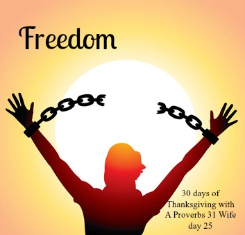 Freedom ~30 Days of Thanksgiving day 25