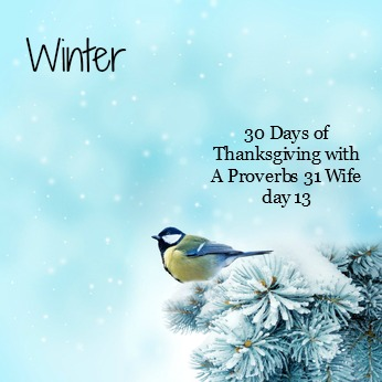 Winter ~30 days of Thanksgiving day 13
