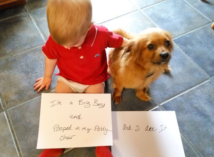 Dog shaming and proud parenting moments. Life at its best.